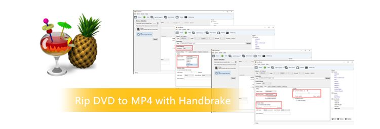 How to Ripping DVD to MP4 with Handbrake